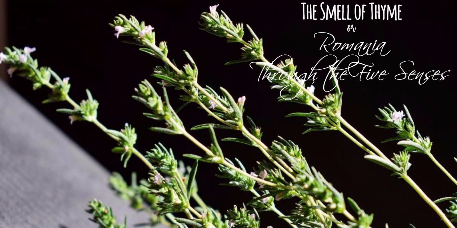 The Smell of Thyme or Romania Through the Five Senses